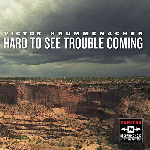 Hard to See Trouble Coming by Victor Krummenacher