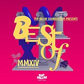 Best Of MMXIV by Various Artists