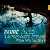 Faure, Elegie et autres chefs-d'oeuvres pour violoncelle (Instants Classiques) by Anne Gastinel