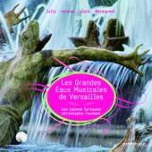 Les Grandes Eaux Musicales de Versailles 2008 by Christophe Rousset