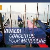 Vivaldi: Concertos pour mandoline (instants classiques) by Rolf Lislevand