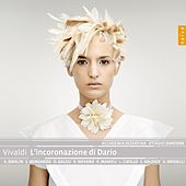 Vivaldi: L'incoronazione di Dario by Various Artists