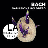 Bach: Goldberg Variations by Pierre Hantaï