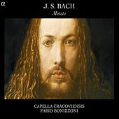 J.S. Bach: Motets by Capella Cracoviensis