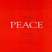 Peace by Darren Motamedy