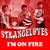 I'm On Fire by The Strangeloves