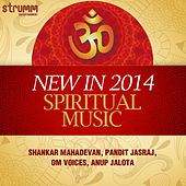 New in 2014: Spiritual Music by Various Artists
