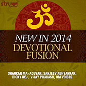 New in 2014: Devotional Fusion by Various Artists