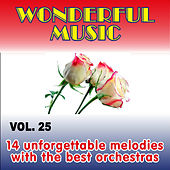 Wonderful Music Vol. 25, 14 Unforgettable Melodies With The Best Orchestras by Various Artists