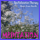 Meditation and Yoga by Various Artists
