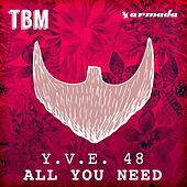 All You Need by Y.V.E. 48