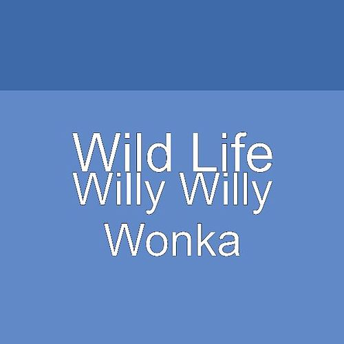 Willy Willy Wonka by Big Talk