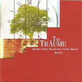 Tag - Träume by Various Artists