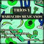 Tríos y Mariachis Mexicanos, Vol. 3 by Various Artists