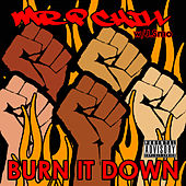Burn It Down by Mr. P Chill