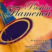 Pasión Flamenca by Various Artists