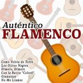 Auténtico Flamenco by Various Artists