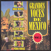 Grandes Voces de Mexico, Vol. 1 by Various Artists