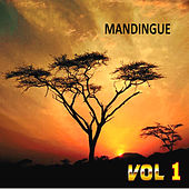Mandingue , Vol. 1 by Various Artists