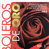 Boleros de Oro, Vol. 1 by Various Artists