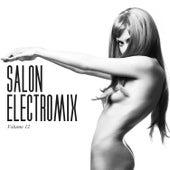 Salon Electromix, Vol. 12 by Various Artists