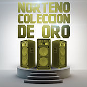 Norteno Coleccion de Oro by Various Artists