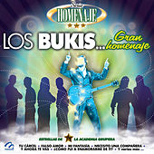 Serie Homenaje: Los Bukis… Gran Homenaje by Grupo Lluvia