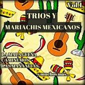 Tríos y Mariachis Mexicanos, Vol. 1 by Various Artists