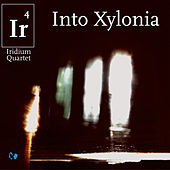 Into Xylonia by Iridium Quartet