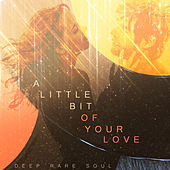 A Little Bit of Your Love - Deep Rare Soul von Various Artists