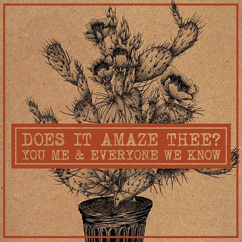 Does it Amaze Thee? - Single by You, Me, and Everyone We Know