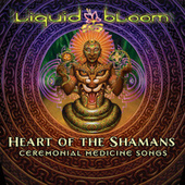 Heart of the Shamans: Ceremonial Medicine Songs by Liquid Bloom