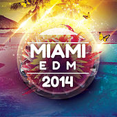 Miami EDM 2014 by Various Artists