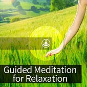 Guided Meditation for Relaxation by Guided Meditation