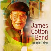 Boogie Thing by James Cotton Band