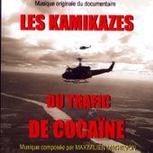 Les Kamikazes Du Trafic De Cocaïne by Maximilien Mathevon