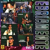 Ebriamente, Vol. 3 von Various Artists