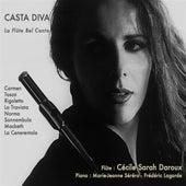 Casta diva: La flûte bel canto by Cécile Daroux