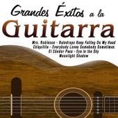 Grandes Éxitos a la Guitarra by Various Artists