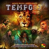 Tempo 93 Riddim by Various Artists