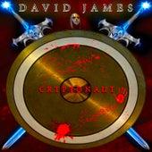 Cryptonaut by David James