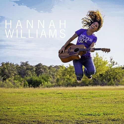 Never Give Up by Hannah Williams
