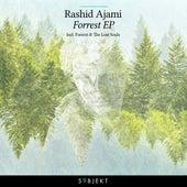Forrest EP by Rashid Ajami