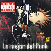 Radikal'S Punk Radio, Vol. 1 by Various Artists