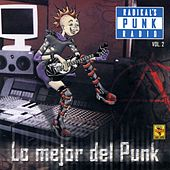 Radikal´s Punk Radio, Vol. 2 by Various Artists