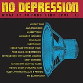 No Depression: What It Sounds Like Vol. 1 by Various Artists