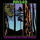 Tangled in the Pines by BR5-49