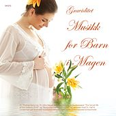 Gravid - Musikk for Barn i Magen by Various Artists