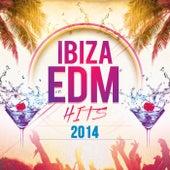 Ibiza EDM Hits 2014 by Various Artists