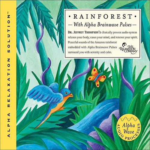 Rain Forest by Dr. Jeffrey Thompson